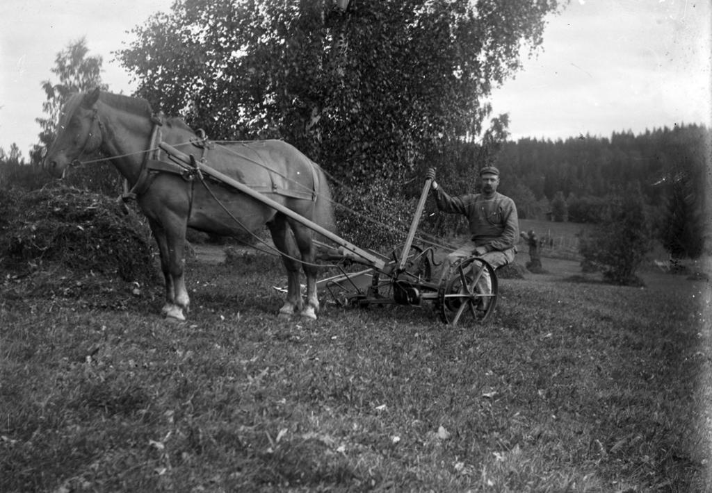 Slåttonn med slåmaskin ca 1900. Foto.