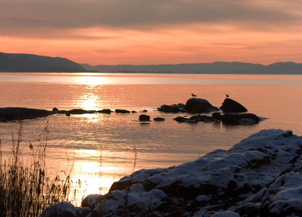 Solnedgang Oslo. Fotografi.