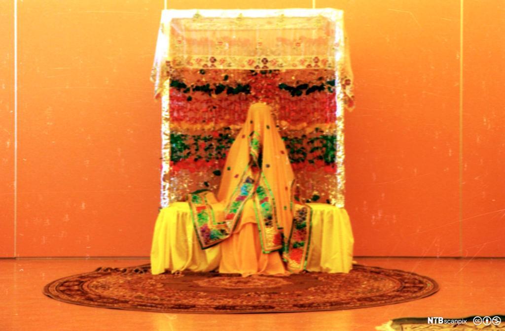 Pakistansk bryllup. Kvinne sitter tildekket med slør. Foto