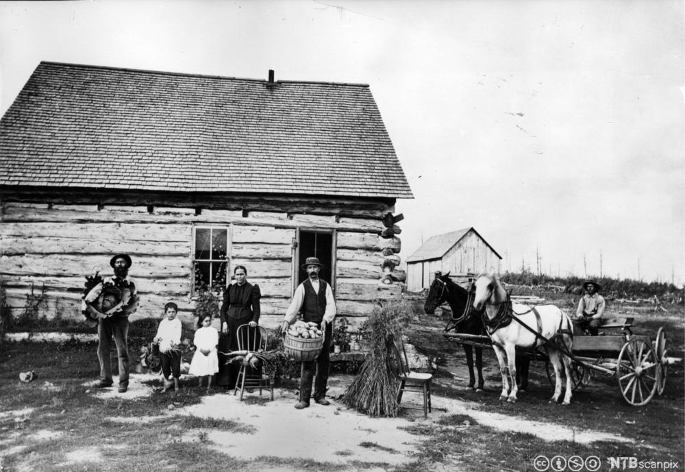 En familie av nybyggere i Minnesota, USA i 1895. Foto.