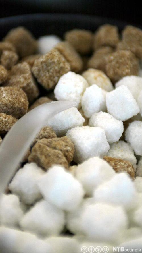 Brune og hvite sukkerbiter i en klump. Foto.