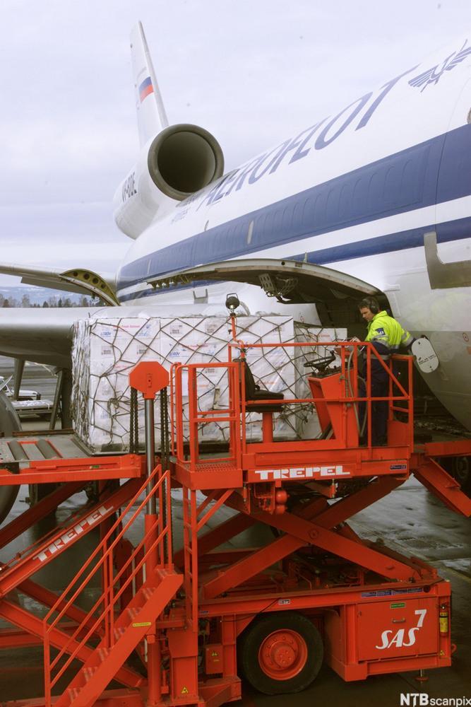 Paller med isoporkasser lastes ombord i fly.foto.