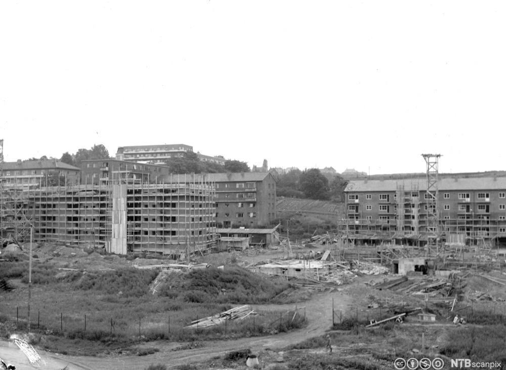 Oslos første boligblokker under bygging på Øvre Tøyen i 1946. Foto.