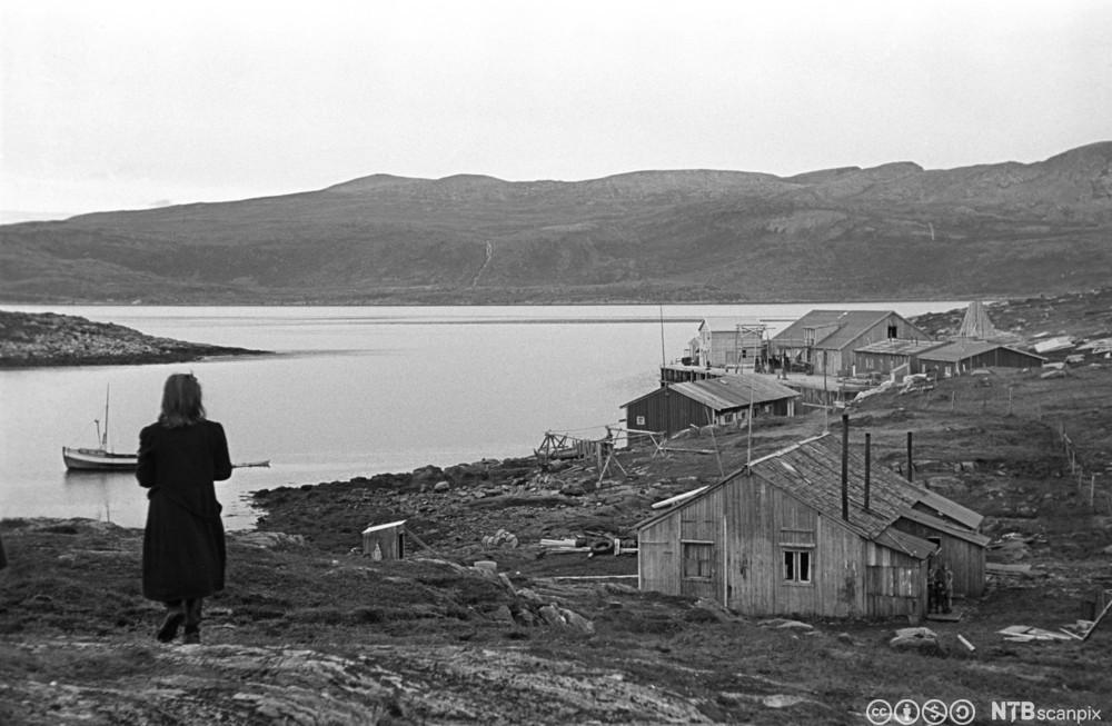 Sørøyas befolkning sliter med gjenresiningen etter andre verdenskrig. Hus under bygging i 1947. Foto.