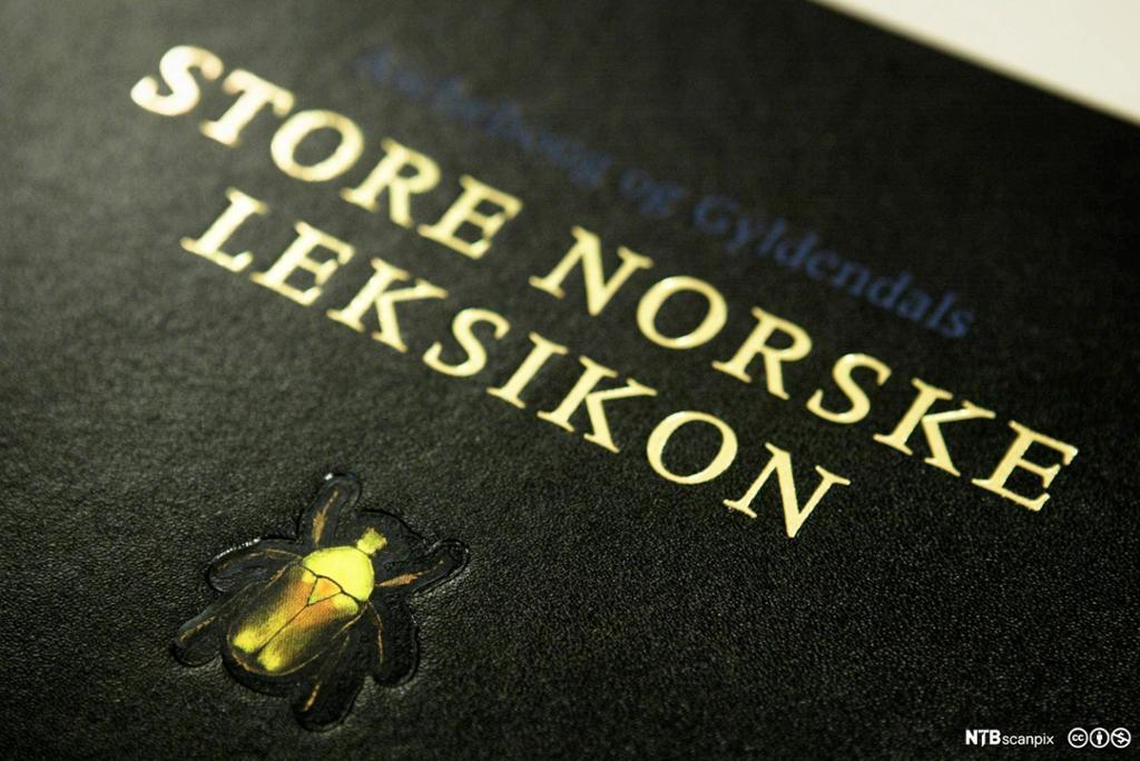 Boksforsiden til Store norske leksikon. Foto.