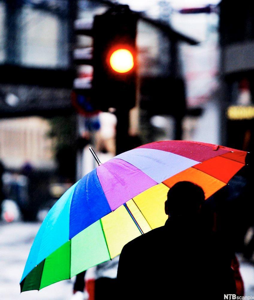 Bilde av en fargerik paraply.