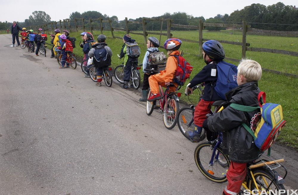 Skoleklasse på sykkeltur. Foto.