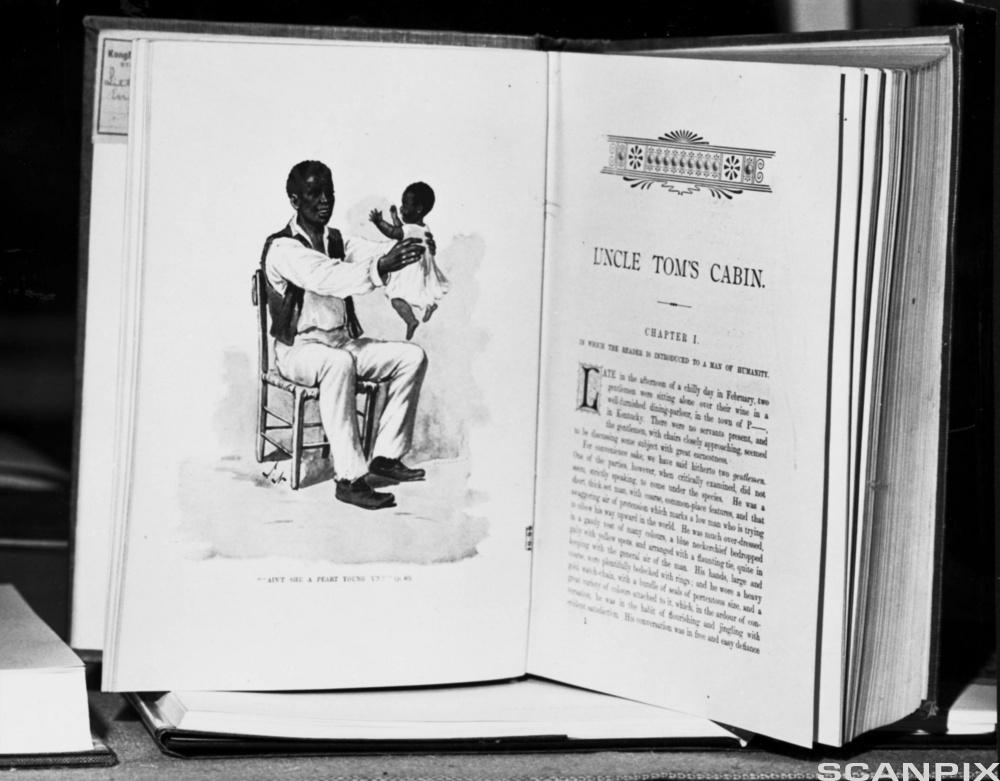 The novel Uncle Tom's Cabin created a wave of revultion towards slavery among Americans in the 1850s and 60s.