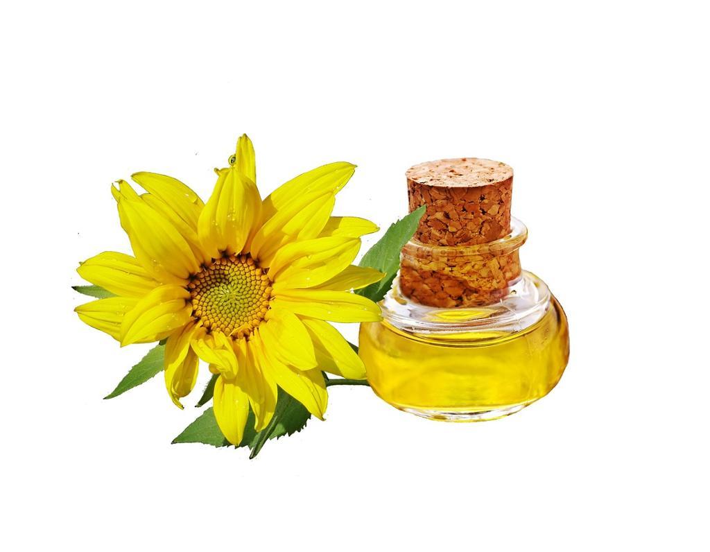 Solsikkeblomst sammen med en flaske solsikkeolje. Foto.