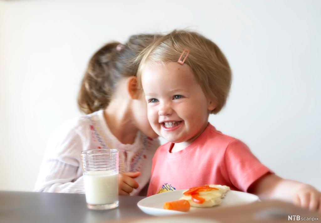 To barn sitter ved et bord. Foran det ene barnet er et glass melk og en asjett med en brødskive med hvitost og paprika og en gulrot ved siden av. Foto.