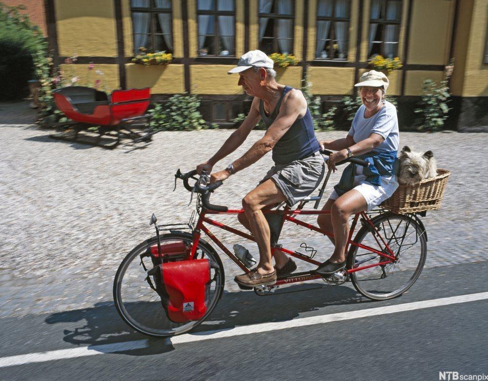 Eldre par på tandemsykkel. Foto.