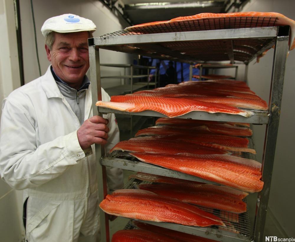 Fiskerinæringen leverer råvarer til fiskeindustrien
