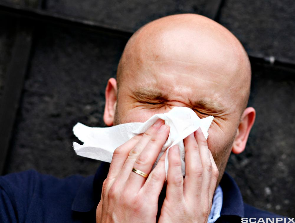 Mann holder for nese og munn med et papirtørkle. Han kniper øynene sammen. Foto.