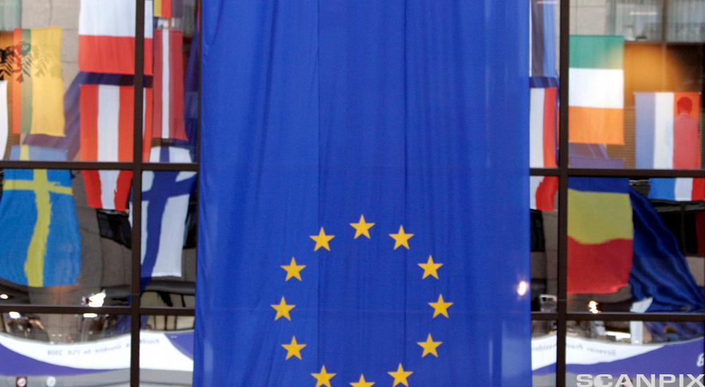 EU-flagget foran medlemslandenes nasjonalflagg i Brüssel. Foto.