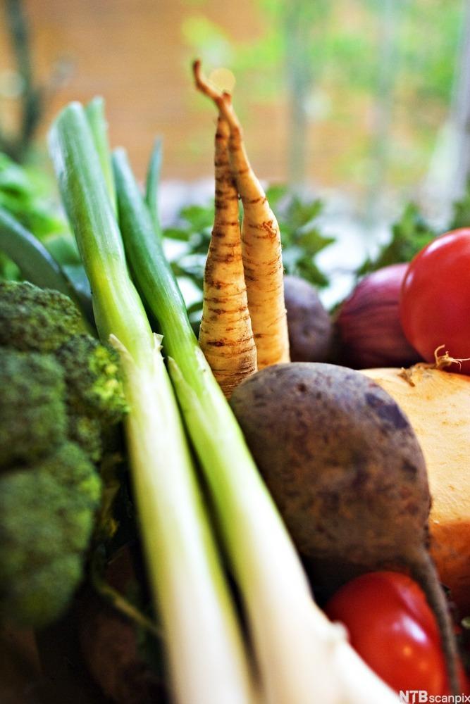 Ulike typer grønnsaker. Foto.