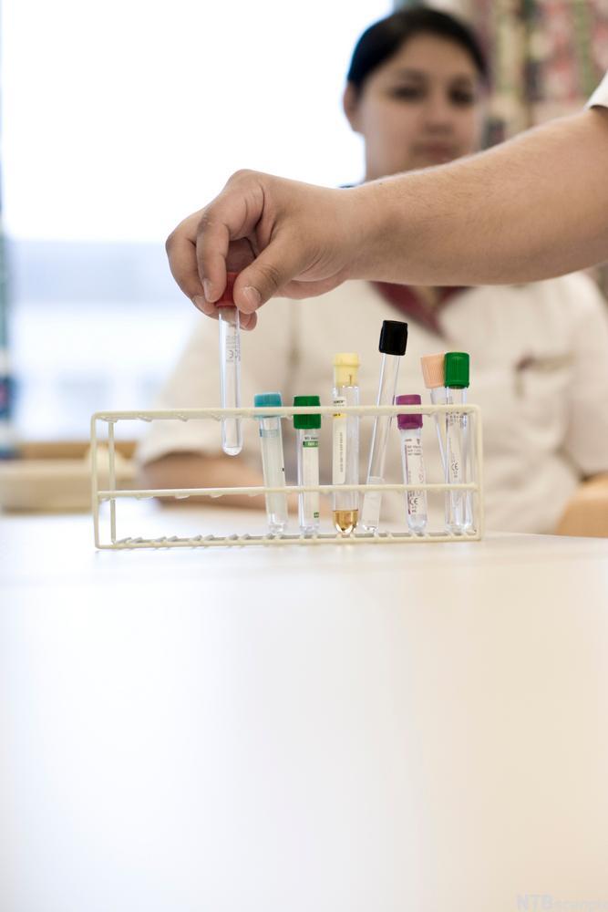 Bildet viser et stativ med prøveglass
