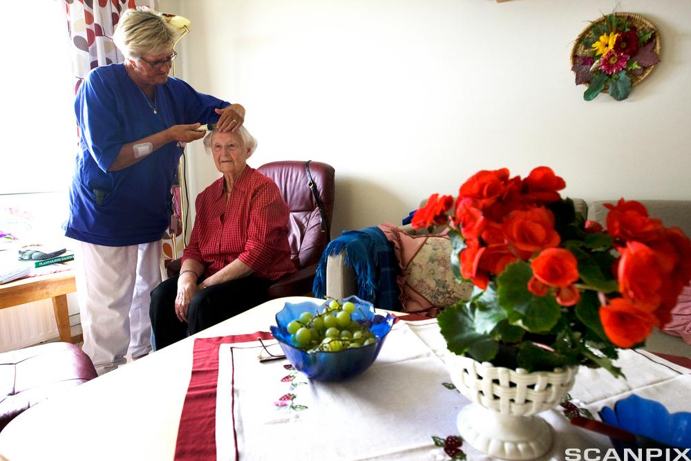 En eldre dame får hjelp til å stelle håret av en helsefagarbeider i sin egen stue. Foto.
