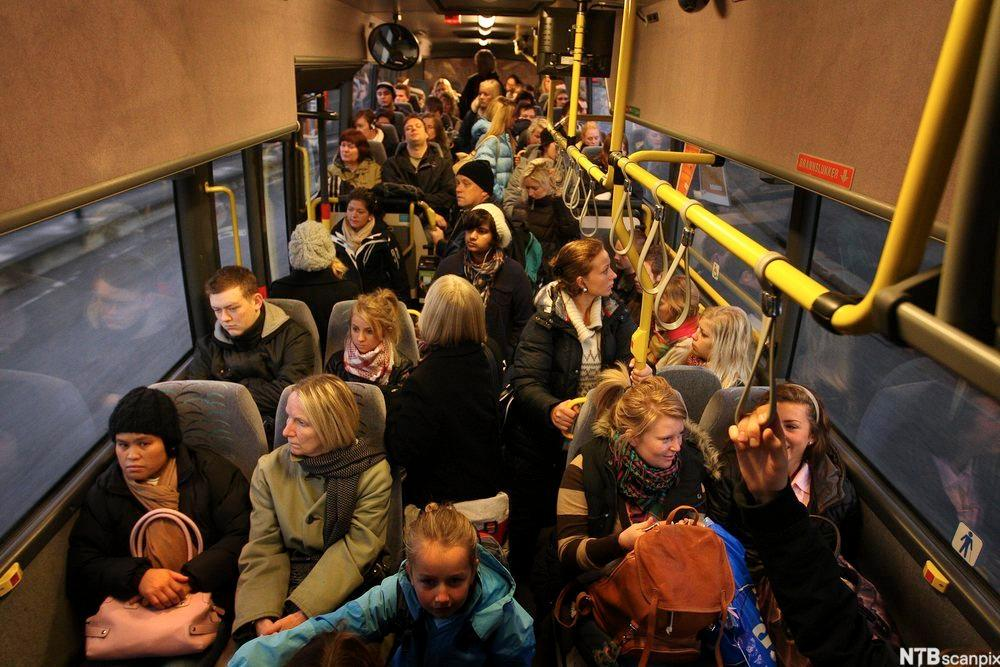 En full buss. Foto.