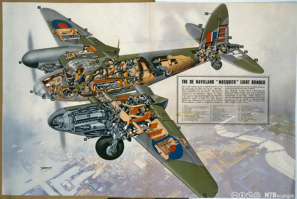 Grafisk framstilling av flyet De Havilland Mosquito