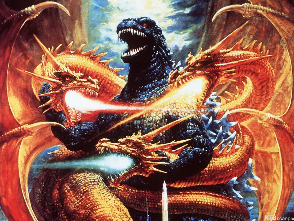 Godzilla  i kamp