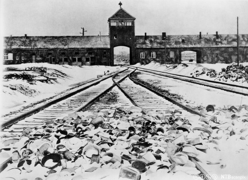 Utryddingsleiren Auschwitz-Birkenau 1945