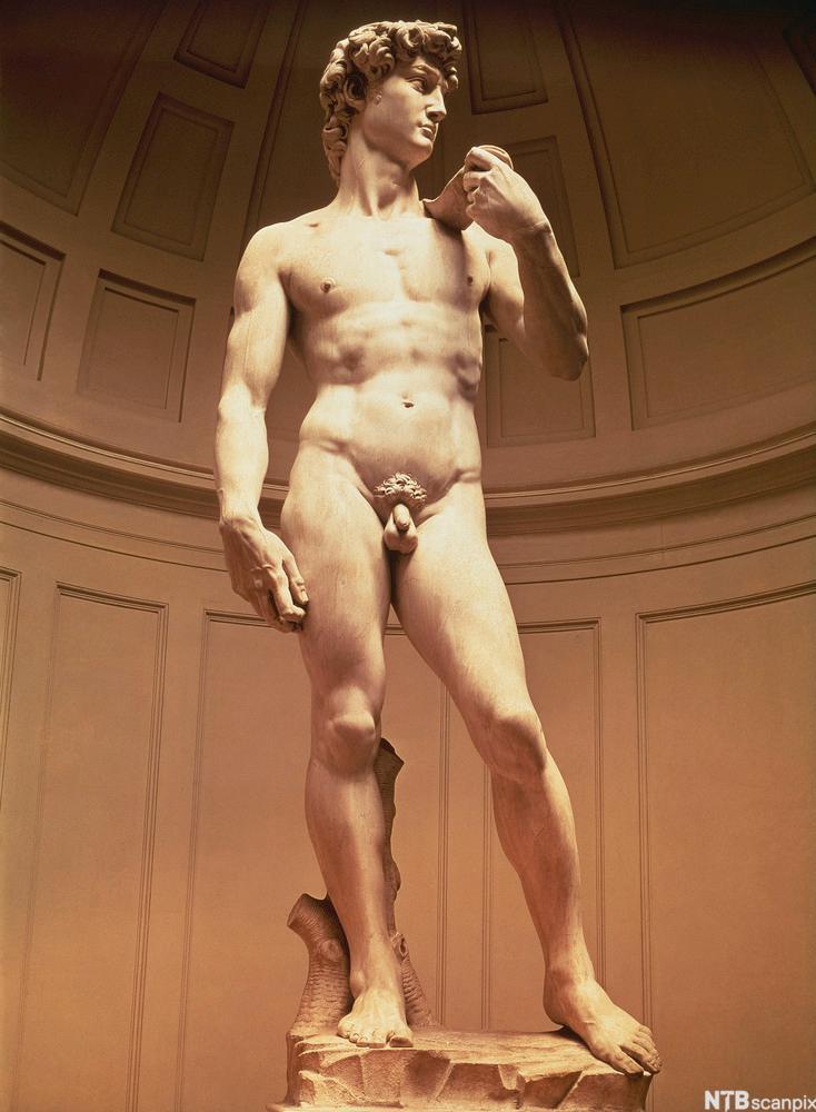 En naken statue i renessansestil. Foto.