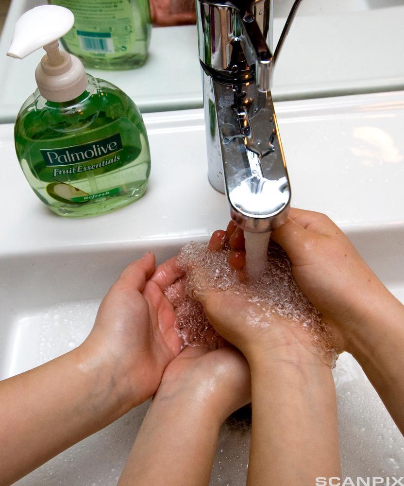 Barn som vasker hender. Foto