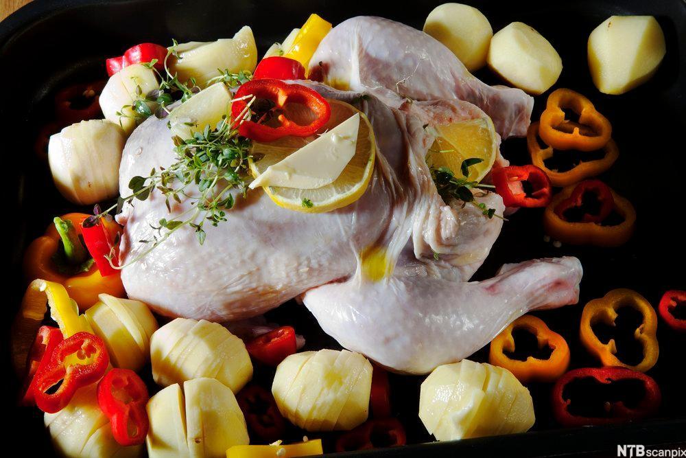 Bilde av en hel kylling klar til steking. Foto
