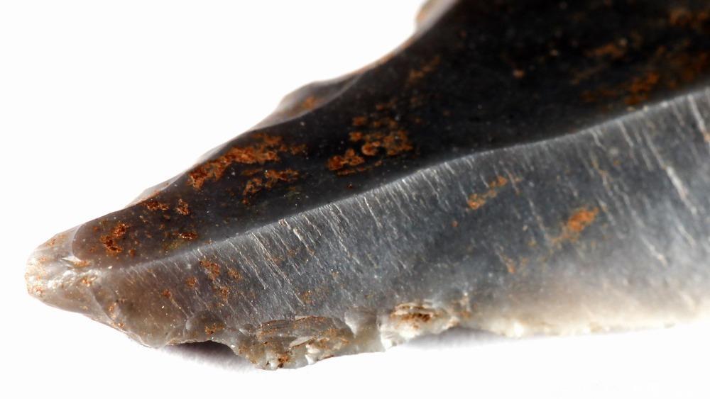 Arkeologisk funn av 8400 år gammelt redskap fra steinalderen. Foto.