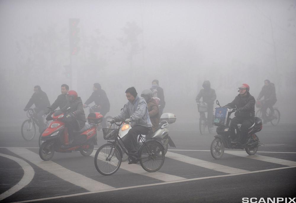 Syklister og forurensning. Foto.