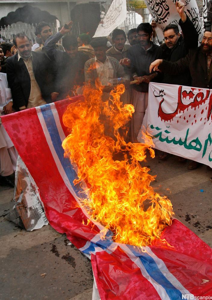 Brenning av norsk flagg i Lahore, januar 2010. Foto.