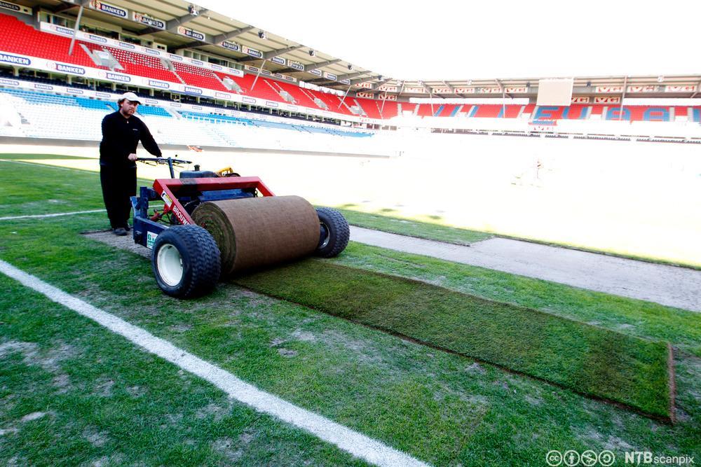 Anleggsgartner legger ny grasmatte. Foto