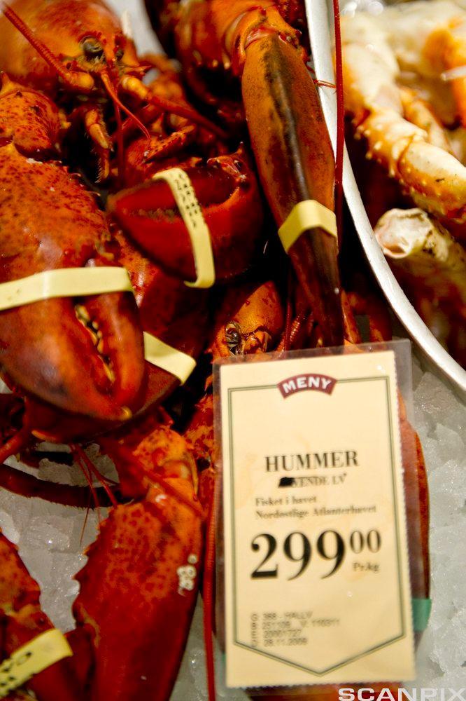 Kokte humrar i fiskedisk med prisskilt. Foto.