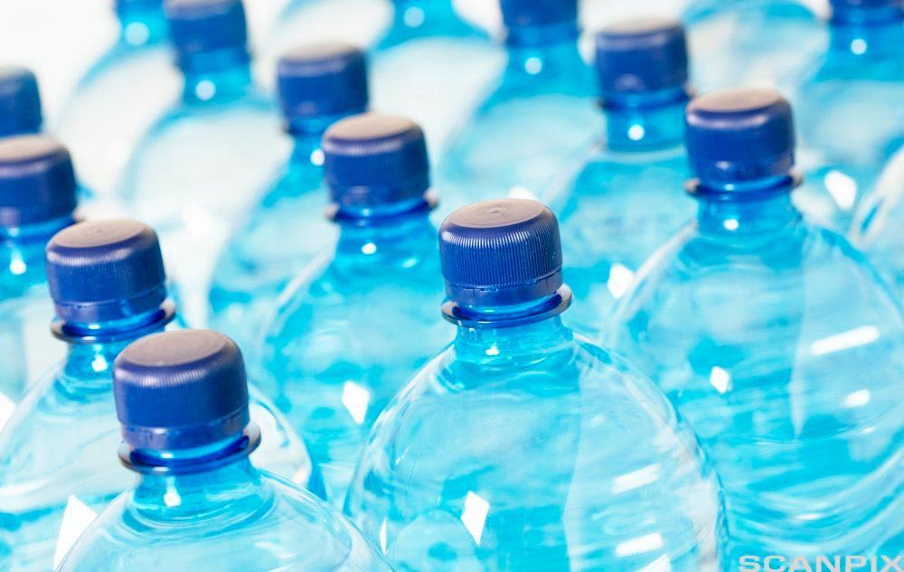 Tomme flasker med blå kork. Foto.