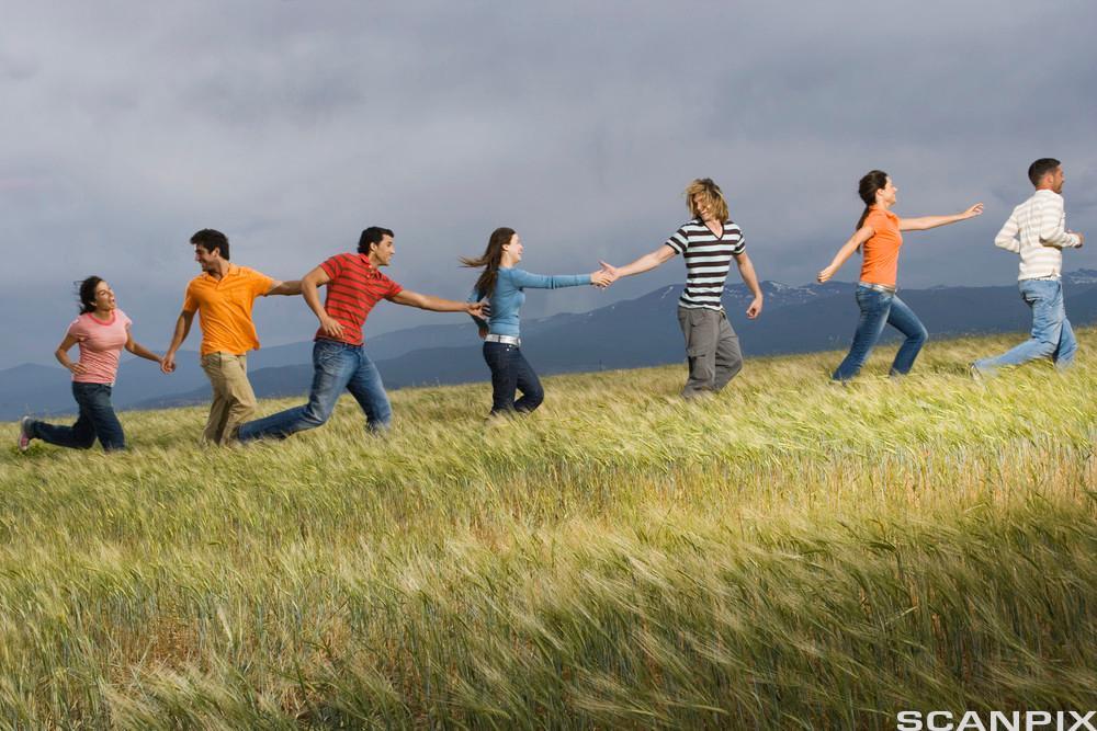Mennesker samarbeider. Foto.