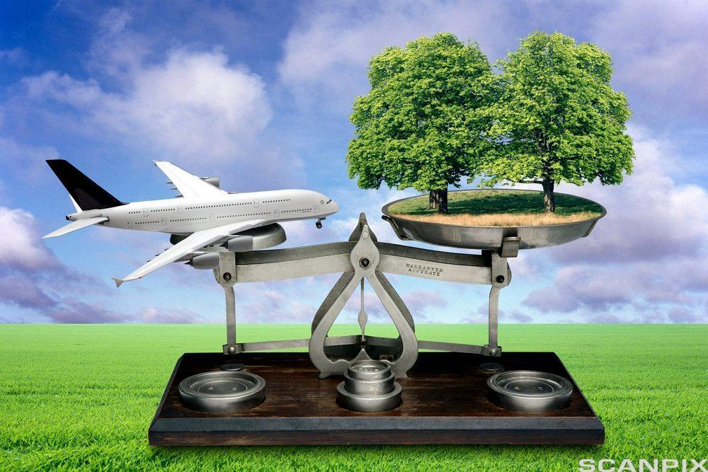 bildet viser et fly og et tre på en vekt