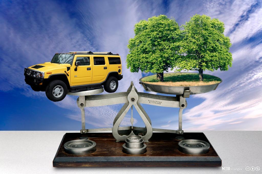 Grafikk av en vekt med en bil i den ene vektskålen og et tre i den andre. Illustrasjon.
