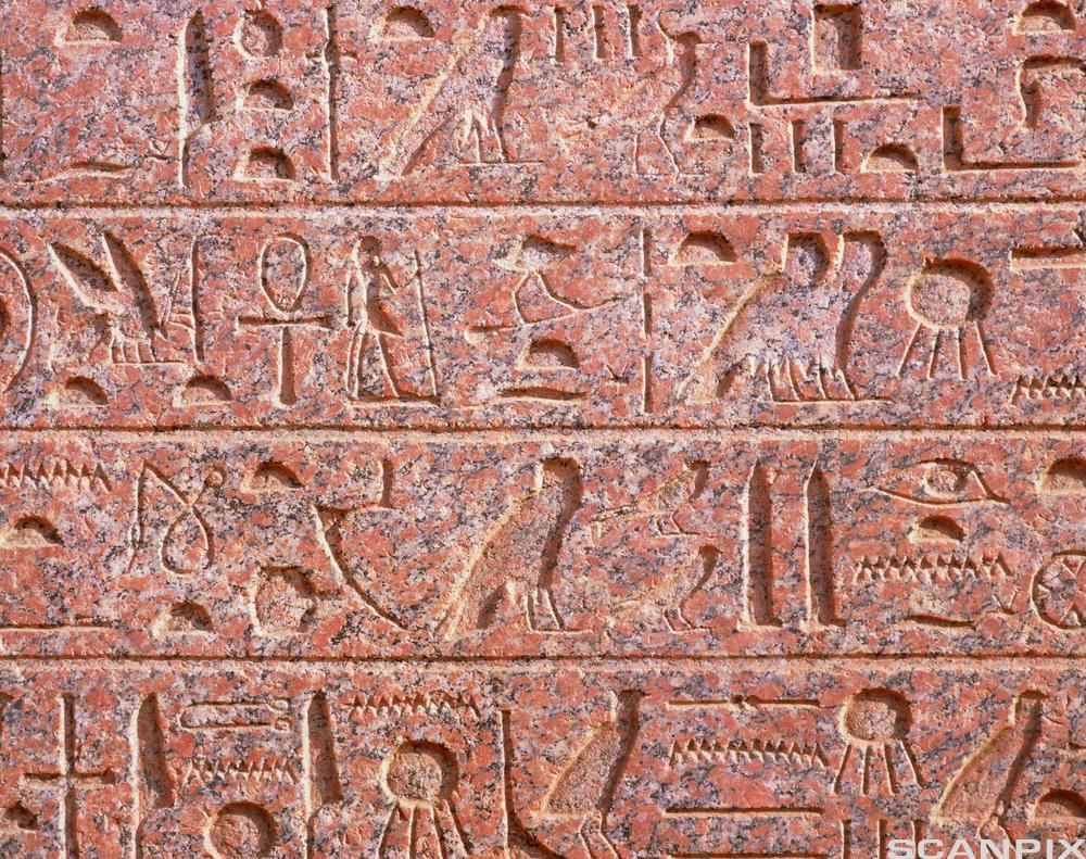 Egyptiske hieroglyfer. Foto.