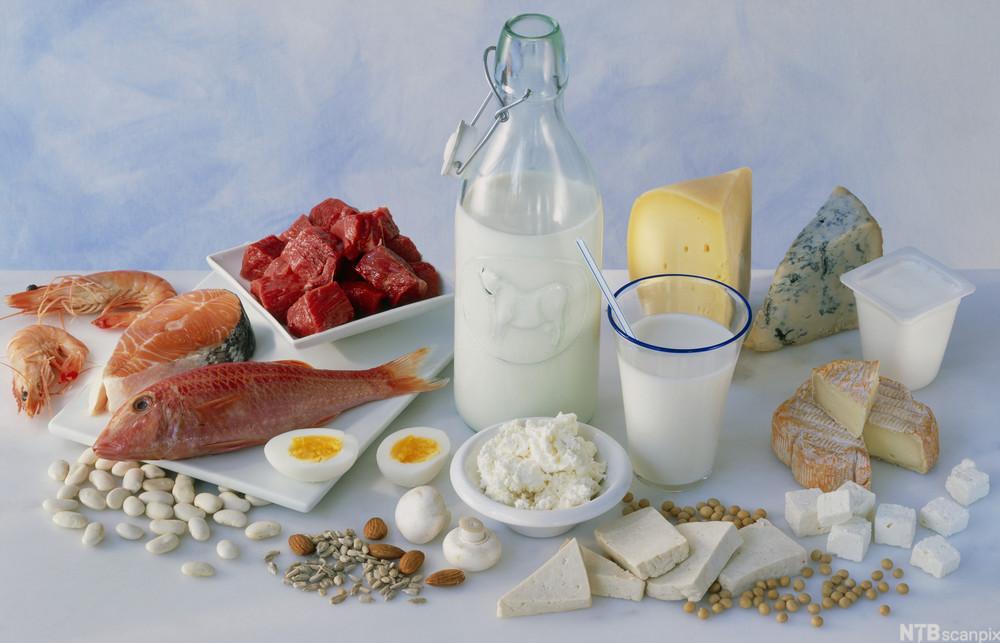 for mange proteiner