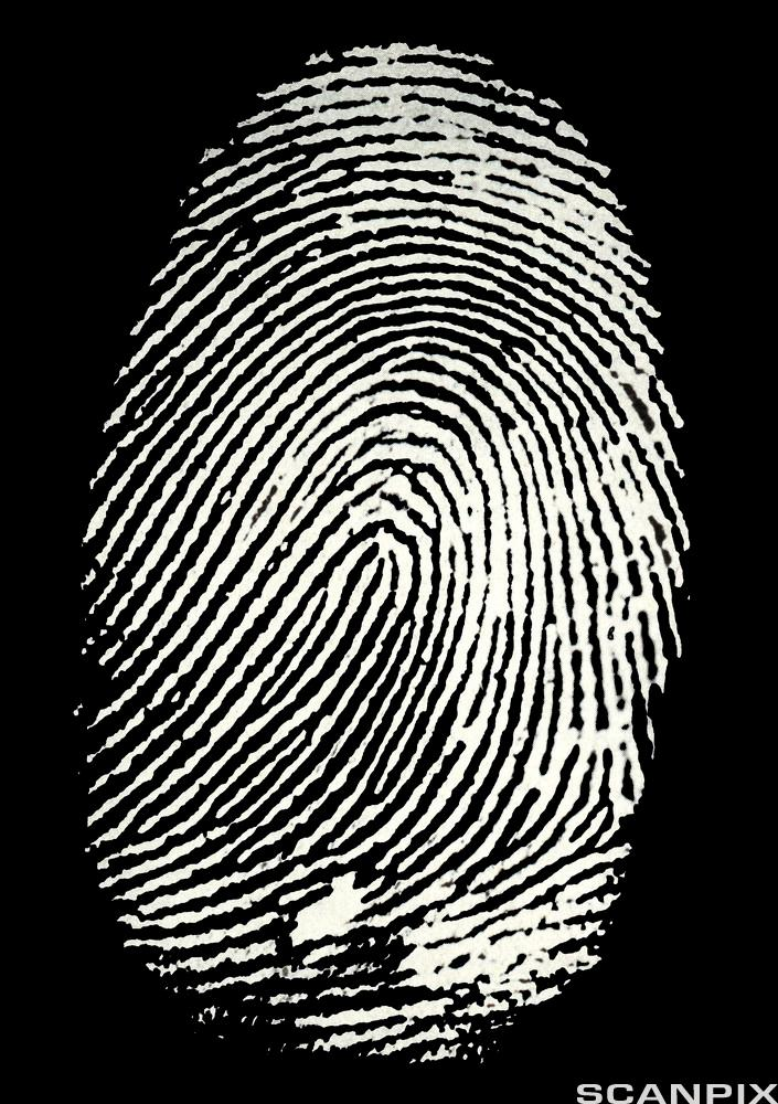 Fingertrykk. Foto.
