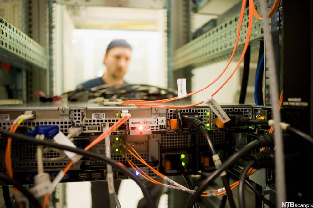 bakside av server i serverskap. Mange merkede ledninger går ut fra maskinen. Foto.