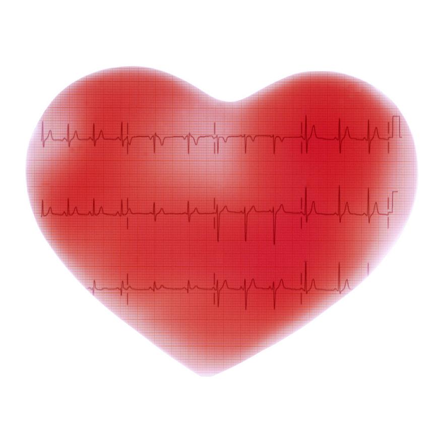 Hjarte og EKG