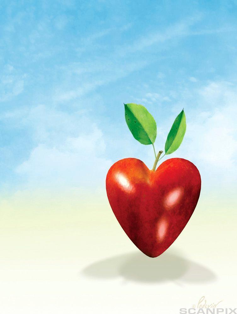 Rødt hjerte med grønne blad. Illustrasjon