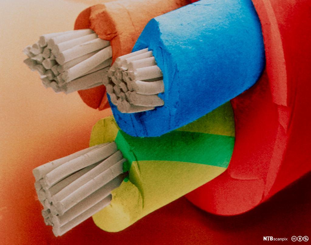 Pfxp-kabel som viser forholde mellom ledende og isolerende materialer. Foto.