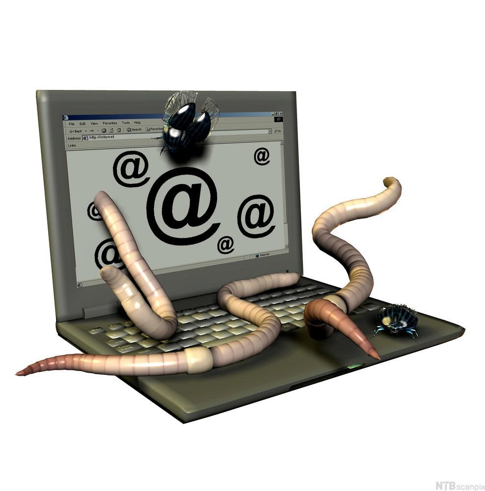 Bilde av datamaskin som angripes av ormer. Illustrasjon