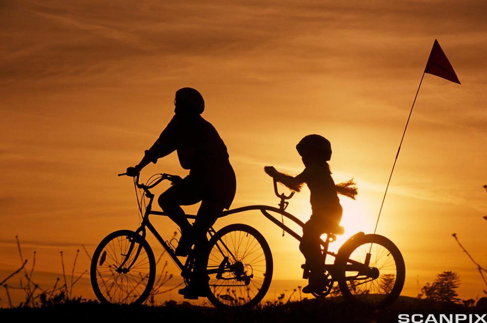 En voksen og et barn på sykkeltur i solnedgang. Foto.