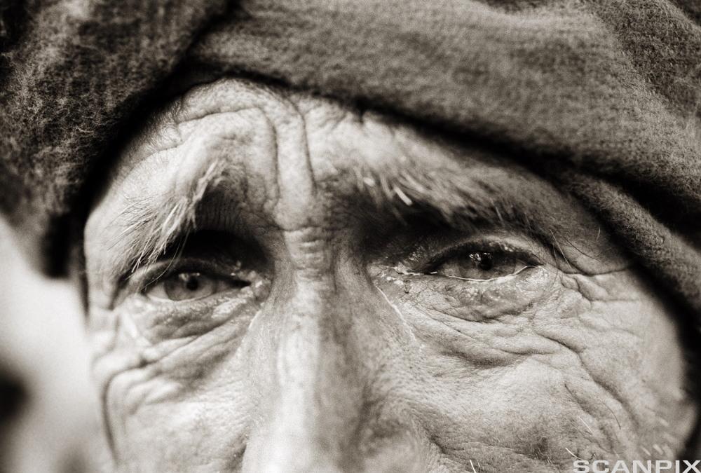 Triste øyne. Foto.