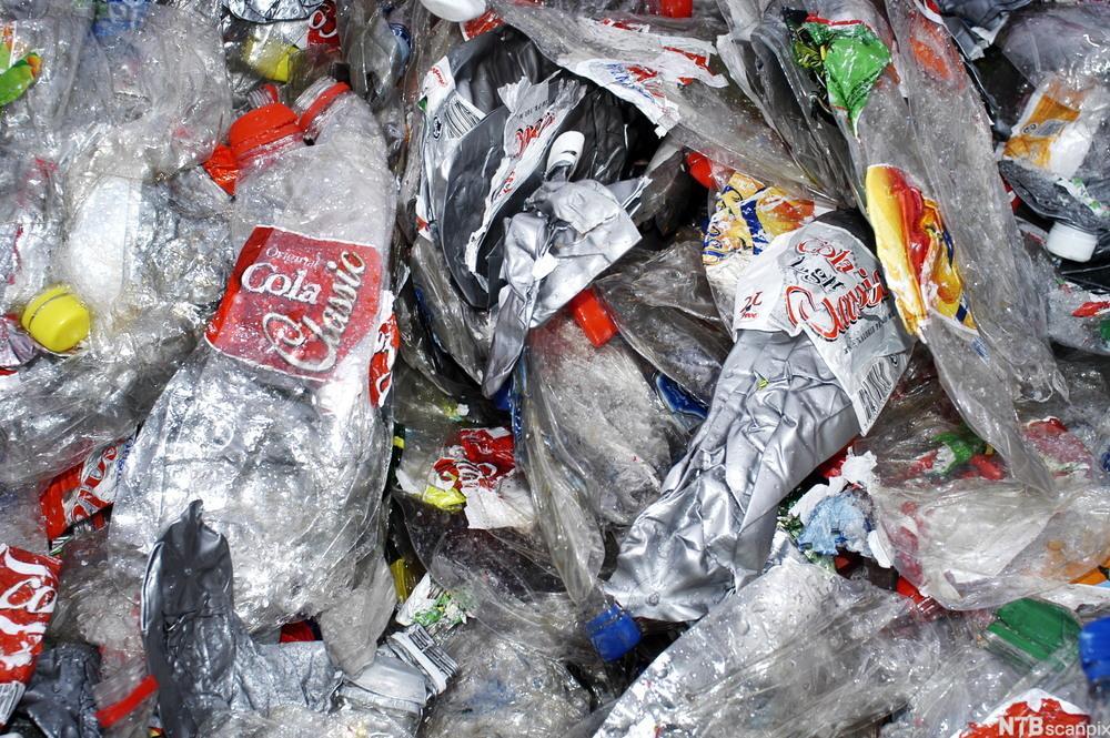 Tomme, sammenklemte plastflasker.foto.