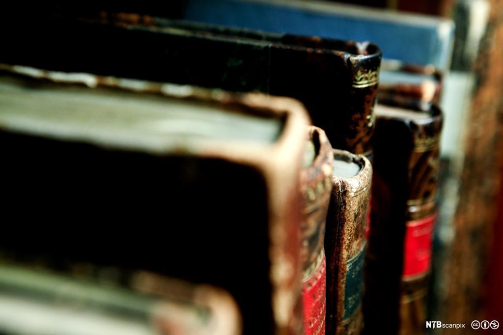 Nærbilde av noen godt brukte bøker som står i ei hylle. Foto.