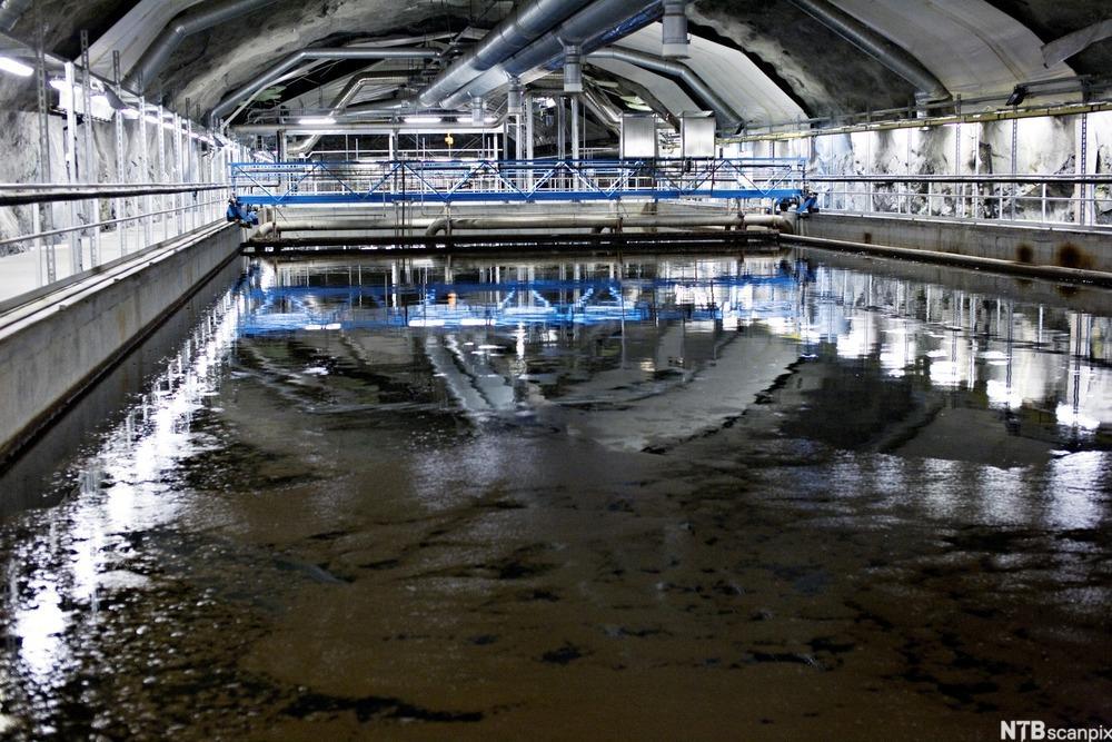 Et basseng med kloakkslam på renseanlegget på Bekkelaget